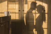 Shadow of romantic couple on wooden wall