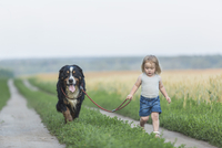 Girl walking with dog on field