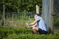 Young man analyzing plants while sitting in park