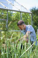 Young man gardening in park