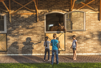 Children watching horse in stable