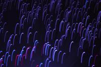 Illuminated fiber optics over purple background