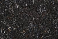 Full frame shot of wild rice
