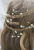 Close-up of flowers in braided hair