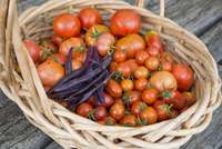 High angle view of fresh tomatoes and purple beans in wicker basket