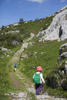 Rear view of boy walking on footpath at Swiss Alps