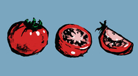 Illustration of whole and sliced tomatoes against blue background