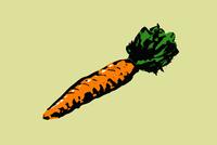 Illustration of carrot against green background