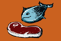 Illustration of fish and meat against orange background