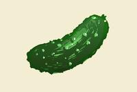 Illustration of pickle against white background