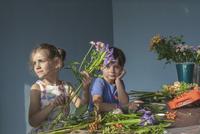 Siblings arranging flowers at table 11016031603| 写真素材・ストックフォト・画像・イラスト素材|アマナイメージズ