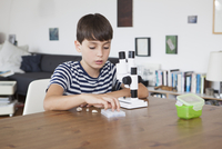 Boy exploring seashells with microscope at home
