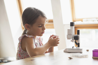 Curious girl looking at specimen with microscope on table at home