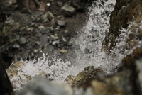 Close-up of water flowing over rocks