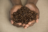 Cropped image of man holding roasted coffee beans in cupped hands at table