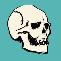 Illustration of human skull against blue background