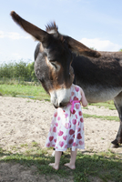 Rear view of girl standing with mule donkey on field