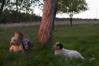 Girl sitting with dogs on grassy field