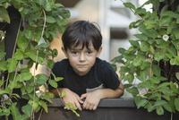 Portrait of boy standing at railing amidst plants