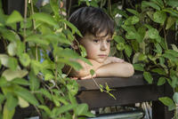 Close-up of boy standing at railing amidst plants