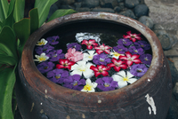 Colorful flowers floating in water urn