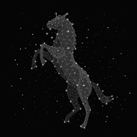 Illustration of constellation forming horse against black background