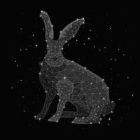 Digital composite image of constellation forming rabbit against black background