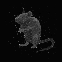 Illustration of constellation forming rat against black background