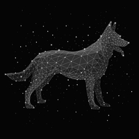 Digital composite image of constellation forming wolf against black background