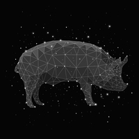 Composite image of constellation forming pig against black background