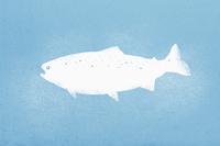 Illustration of fish against blue background