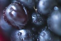 Extreme close-up of blackberry fruit