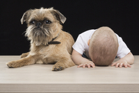 Boy sleeping with head down by dog on table against black background