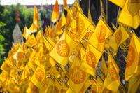 Close-up of yellow prayer flags at temple