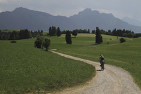 Rear view of person riding bicycle on dirt road amidst grassy field against mountains 11016033105| 写真素材・ストックフォト・画像・イラスト素材|アマナイメージズ