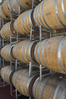 Wine barrels in shelves at cellar