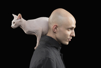Side view of bald man carrying Sphynx hairless cat on shoulder against black background