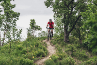 Man mountain biking on dirt track 11016034064| 写真素材・ストックフォト・画像・イラスト素材|アマナイメージズ