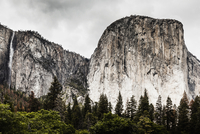 Scenic view of trees growing against rocky mountains, Yosemite National Park, California, USA 11016034392| 写真素材・ストックフォト・画像・イラスト素材|アマナイメージズ