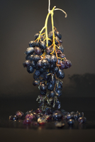 Close-up of grapes hanging on table against black background