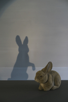 Rabbit figurine with shadow on wall at home