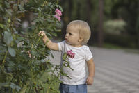Cute girl touching rose bud at park