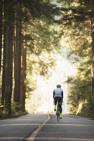 Rear view of cyclist riding bicycle on road by trees 11016035053| 写真素材・ストックフォト・画像・イラスト素材|アマナイメージズ