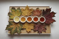 Directly above shot of herbal tea cups surrounded with dry maple leaves in tray on white background