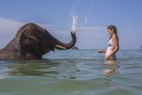Side view of elephant splashing a woman in water