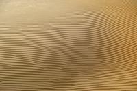 Full frame shot of sand dunes in desert 11016035401| 写真素材・ストックフォト・画像・イラスト素材|アマナイメージズ