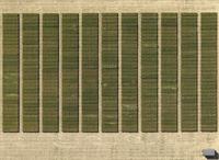Aerial view of crops in agricultural landscape, Hohenheim, Stuttgart, Baden-Wuerttemberg, Germany 11016035480| 写真素材・ストックフォト・画像・イラスト素材|アマナイメージズ