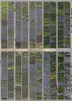 Full frame shot of crop fields in landscape, Hohenheim, Stuttgart, Baden-Wuerttemberg, Germany