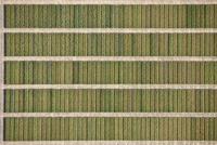 Full frame shot of agricultural field, Hohenheim, Stuttgart, Baden-Wuerttemberg, Germany