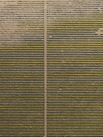 Full frame aerial view of crops in agricultural landscape